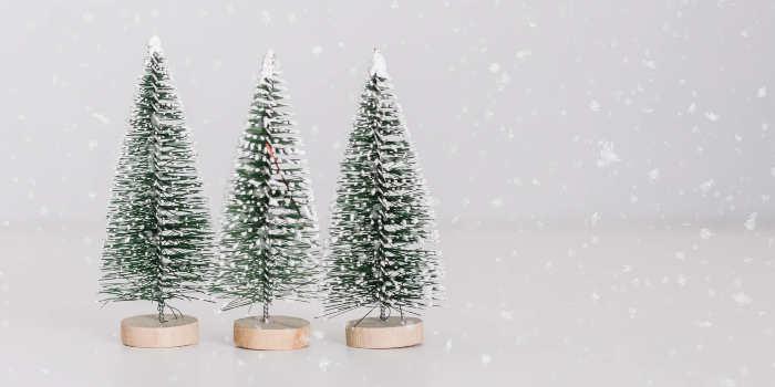 Kerstversiering soorten tips en aanbiedingen