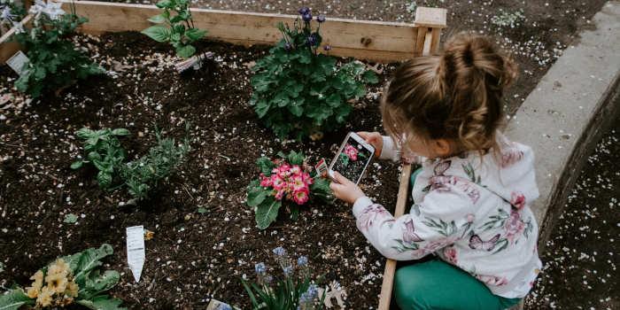 Kindvriendelijke tuin tips advies en informatie